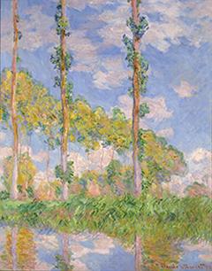 《陽を浴びるポプラ並木》